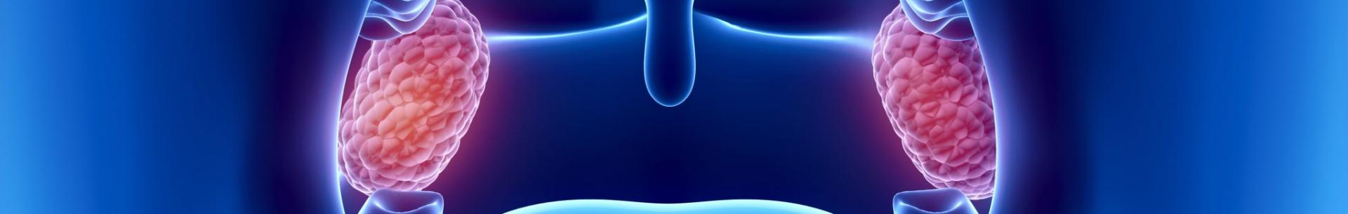 Mezioborové stanovisko kpooperační péči po tonzilotomii nebo tonzilektomii